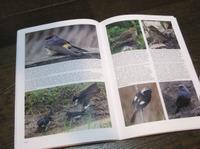 Birdingworld02