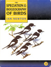 Sbofbirds